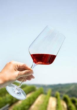 盘点葡萄酒的几个错误观念图片