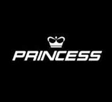 Princess公主