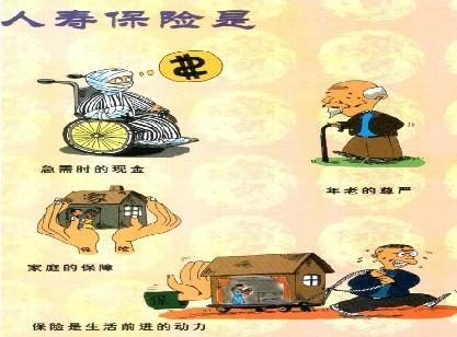 人寿保险_人寿保险险种—金投保险网