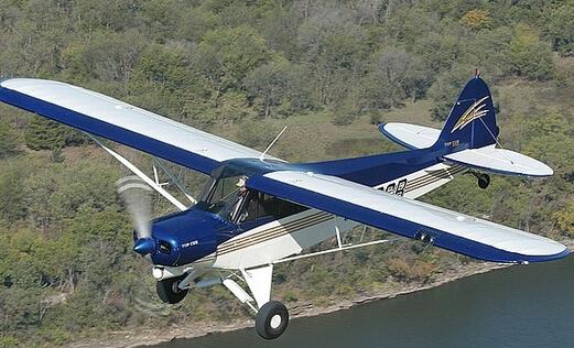 Top Cub:玩家公认的终极越野私人飞机