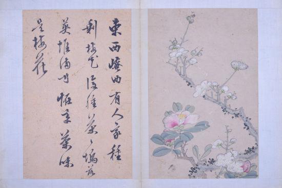 书画收藏与鉴赏 梅花图第六开