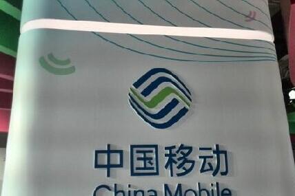中國移動降薪50%:員工集體暴走