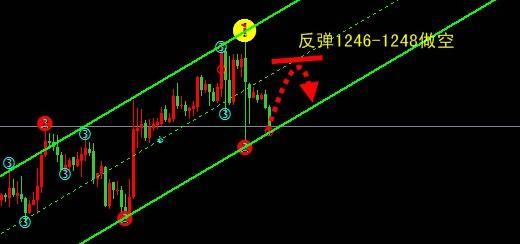 今日金价空一度呈强 黄金价格还会涨的