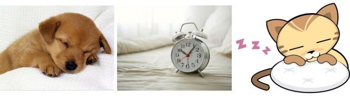 你知道么 睡眠时间过长会过早死亡?