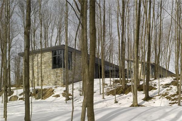 布罗蒙别墅:无拘无束的森林美景豪宅