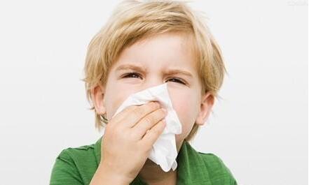 流鼻血不能仰头是真的吗?专家教你如何正确止血