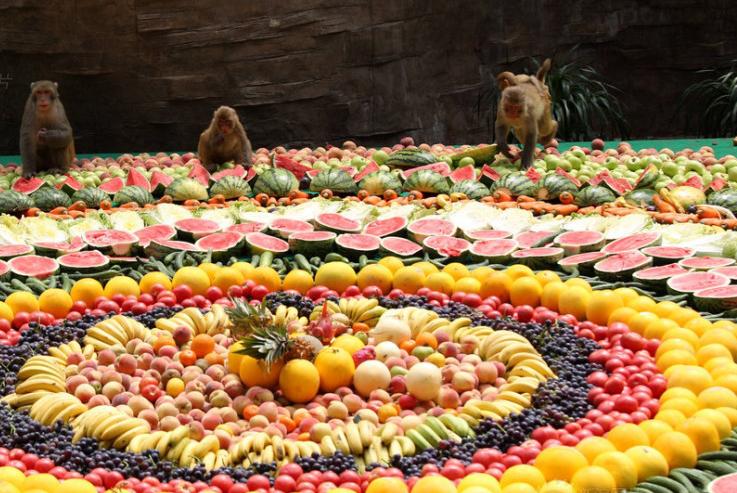 本命年吃自助大餐 8000余斤水果宴请馋嘴猴