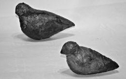 """罕见""""和平鸽母子""""戈壁石 藏家20万没舍得卖"""