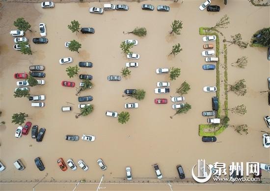 """台风天""""爱车""""遭水淹 莫发动先报车损险车险"""