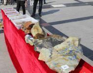 两起案件同时告破 丽水五贼盗窃青田石雕价值340万