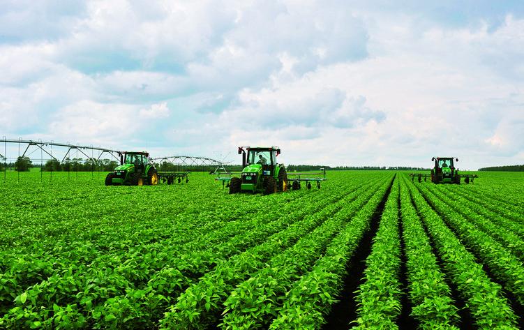 降雨稀疏 巴西大豆播种进展缓慢