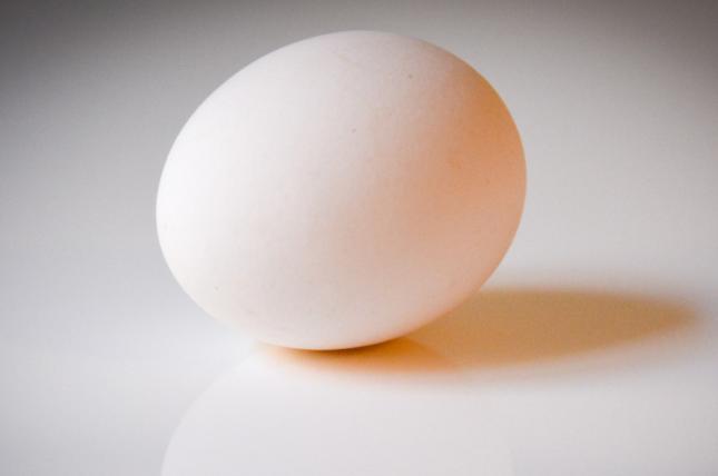 鸡蛋现货恢复上涨 贸易商看涨预期增强
