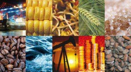 上海期货交易所10月24日期货交易综述