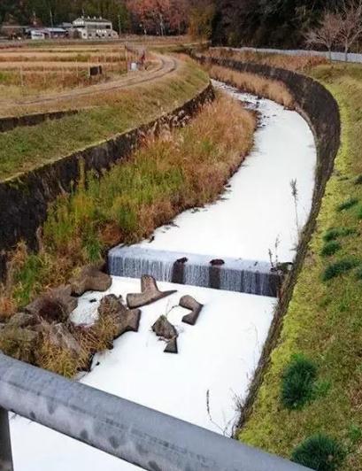 日本载17吨牛奶卡车翻车 将河水染成了乳白色