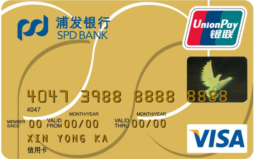 浦发标准金卡(银联+VISA)