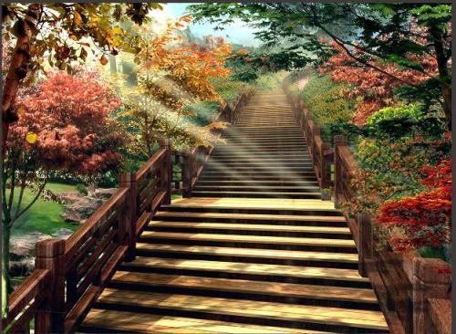 本溪桓仁枫林谷森林公园图片