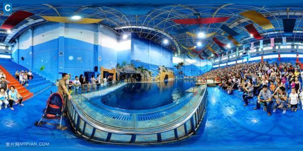 曲江曲江海洋馆旅行攻略_西安西安海洋馆在哪炫舞最新旅游挑战s攻略图片