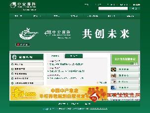 中宏人寿保险公司_中宏保险公司网址查询_中宏保险网址查询
