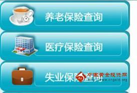 郑州社保查询_郑州社会保险查询