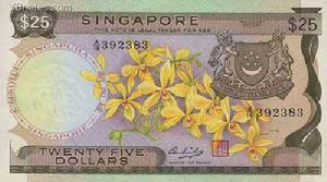 新加坡元图案介绍