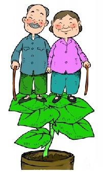 商业养老保险人寿养老保险产品