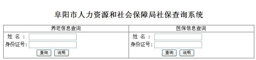 阜阳社保查询个人账户查询