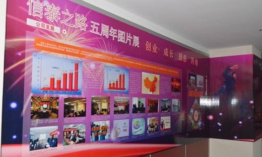 信泰人寿步入第二个五年 举办五周年图片展活动