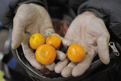 火车盒饭太贵 6旬农民工上车前未吃晚饭靠一袋橘子撑12小时