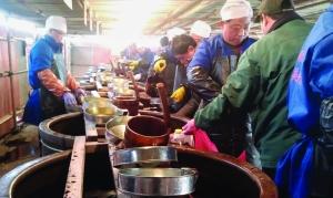 镇江数千人集体打酱油 市民称不打酱油没过年感觉