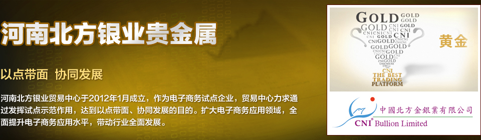 河南北方银业