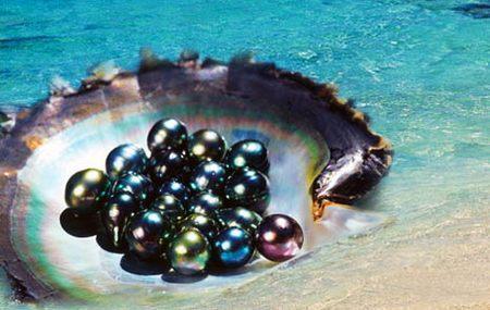 大溪地黑珍珠