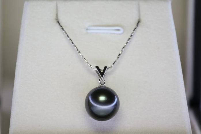 黑珍珠产地