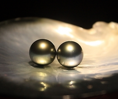 大溪地黑珍珠_黑珍珠真假鉴别_黑珍珠产地