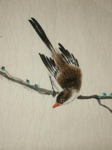花鸟画技法