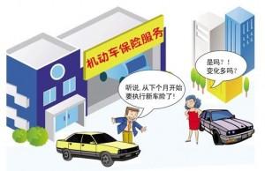 汽车强制险一年多少钱_汽车强制险包括什么_汽车强制险—金投保险网