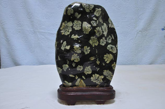 菊花石产地种类_菊花石鉴定_菊花石价值_菊花石的形成