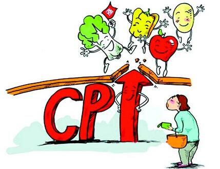 CPI是什么意思