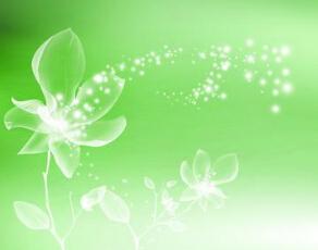 什么化妆品是纯植物的