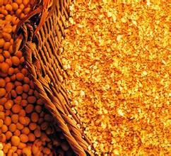豆粕1409