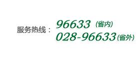 四川省农村信用社电话银行