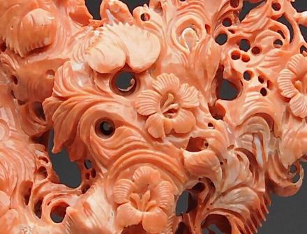 红珊瑚的价格
