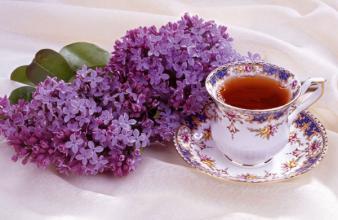 春季泡杯花草茶能缓解春困