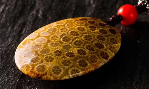 神奇的珊瑚玉 竟然能抗癌!