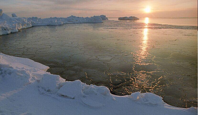 近十万年来首次!北极今年也许无冰