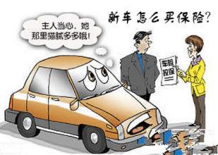 新车保险买哪些最划算_不需要的鸡肋保险有哪些