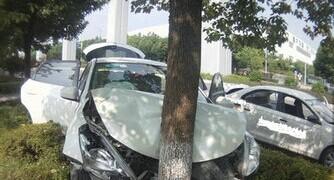 蹭洒水车洗车撞树:真是得不偿失