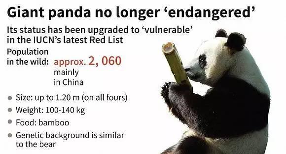 也来谈谈不再是濒危动物的大熊猫