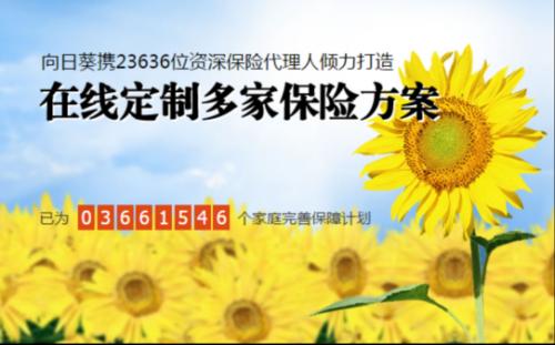 陈戎:互联网保险平台更应专注保障本质