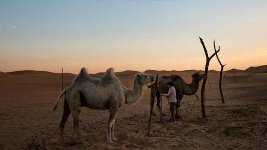 美媒称中国北方沙漠扩大 沙尘暴越来越频繁