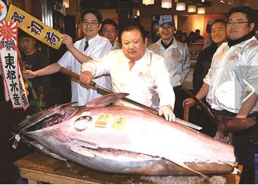 日本鱼王1公斤2万 究竟是什么鱼这么贵?